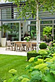 THE GLASS HOUSE  PETERSHAM. ARCHITECTS TERRY FARRELL PARTNERS. GARDEN DESIGN BY SALLIS CHANDLER: VIEW ACROSS LAWN AND HYDRANGEA ANNABELLE TO DINING AREA  LIMESTONE PATIO