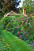 OLD THATCH  BERKSHIRE: VIEW TO THATCHED COTTAGE WITH PERGOLA / ARBOUR WITH ROSE - ROSA AMERICAN PILLAR AND LAVENDER