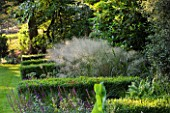 DEW POND HOUSE: DESIGN BY WILSON MCWILLIAM STUDIO - BOUNDARY PLANTING - LAWN  BUXUS SEMPERVIRENS  DESCHAMPSIA CESPITOSA BRONZE VEIL  MISCANTHUS SILVER FEATHER  DRYOPTERIS