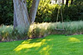 THE LAKE HOUSE: TREE WITH TREE SWING  LAWN AND GRASSES