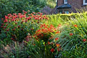 PECKOVER HOUSE  WISBECH  CAMBRIDGESHIRE: THE NATIONAL TRUST - RED BORDER WITH HELENIUMS  MONARDAS AND CROCOSMIA - OLD COACHMANS COTTAGE IN THE BACKGROUND