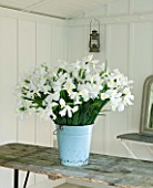 TWIG HUTCHINSON HOUSE  LONDON: WOODEN TABLE WITH WHITE IRISES IN A METAL CONTAINER