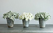 TWIG HUTCHINSON HOUSE  LONDON: METAL CONTAINERS ON SIDEBOARD WITH WHITE RANUNCULUS