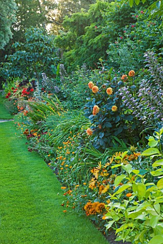 WORCESTER_COLLEGE__OXFORD_HERBACEOUS_BORDER_WITH_DAHLIA_DAVID_HOWARD__ACANTHUS_MOLLIS_AND_CORNUS_ALB