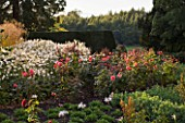 RAGLEY HALL GARDEN  WARWICKSHIRE: THE ROSE GARDEN IN AUTUMN: ROSE GORDONS COLLAGE AND ANEMONE X HYBRIDA ANDREA ATKINSON