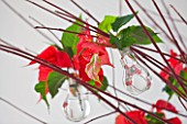 THE URBAN FLOWER FIRM (TUFF) : TWIGS DECORATED WITH GLASS JARS WITH POINSETTIA CHRISTMAS FEELINGS RED