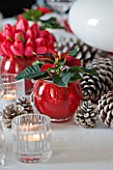 THE URBAN FLOWER FIRM (TUFF) : WHITE AND RED CHRISTMAS TABLE SETTING WITH POINSETTIA CHRISTMAS FEELINGS RED  FIR CONES AND CANDLES