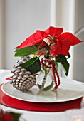 THE URBAN FLOWER FIRM (TUFF) : WHITE AND RED CHRISTMAS TABLE SETTING WITH POINSETTIA CHRISTMAS FEELINGS RED AND FIR CONES