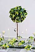 DESIGNER IAN LLOYD - CHRISTMAS TABLE SETTING IN WHITE AND LIME GREEN  WITH CANDLES AND POINSETTIA CHRISTMAS FEELINGS WHITE