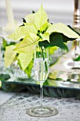 DESIGNER IAN LLOYD - CHRISTMAS TABLE SETTING IN WHITE AND LIME GREEN  WITH CANDLES AND POINSETTIA CHRISTMAS FEELINGS WHITE IN WINE GLASS