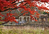 HEVER CASTLE  KENT: AUTUMN: AUTUMN COLOUR OF RED MAPLE ON SIXTEEN ACRE ISLAND WITH THE LOGGIA BEHIND