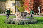 HEVER CASTLE  KENT: AUTUMN: TWO GARDENERS CUTTING LAVENDER AROUND A LARGE TERRACOTTA CONTAINER WITH PALM IN THE ITALIAN GARDENS