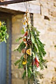 THE GARDEN AND PLANT COMPANY  HATHEROP  GLOUCESTERSHIRE: FESTIVE HAND-TIE WITH PINE  PINE CONES  CINNAMON  CHILLIES AND DRIED ORANGE SLICES.