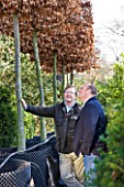 CROCUS NURSERY  SURREY: ARNE MAYNARD AND CO-DIRECTOR MARK FANE CHECK PLEACHED COPPER BEECH TREES FOR ARNE MAYNARD 2012 CHELSEA FLOWER SHOW GARDEN