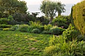 DESIGNER JAMES BASSON, SCAPE DESIGN, FRANCE: LOW MAINTENANCE GARDEN WITH ZOYSIA TENUIFOLIUM - PROVENCE, SUMMER, FLOWERS, FLOWERING, HEDGE, DRY, DROUGHT TOLERANT