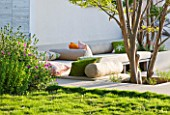 DESIGNER JAMES BASSON, SCAPE DESIGN, FRANCE: TERRACE BESIDE HOUSE WITH LAGERSTROEMERIA INDICA TREE AND ZOYSIA TENUIFOLIA - PROVENCE, SUMMER, REFLECTIONS, SEATING, CUSHIONS