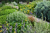 DESIGNER JAMES BASSON, SCAPE DESIGN, FRANCE: DENSE, LOW MAINTENANCE PLANTING OF BALLOTA PSEUDODICTAMNUS, PHLOMIS EDWARD BOWLES, SAGES AND ARTEMISIA. DROUGHT TOLERANT, DRY
