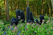 TREMENHEERE SCULPTURE GARDENS  CORNWALL: BLACK MOUND BY DAVID NASH - CHARRED OAK SHAPES IN SCULPTED HUDDLE IN WOODLAND WITH BLUEBELLS