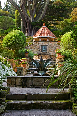 TRESCO_ABBEY_GARDEN__TRESCO___ISLES_OF_SCILLY_VIEW_INTO_THE_MEDITERRANEAN_GARDEN_WITH_STEPS__AGAVE_F