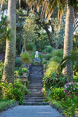 TRESCO_ABBEY_GARDEN__TRESCO___ISLES_OF_SCILLY_VIEW_UP_THE_NEPTUNE_STEPS_TO_THE_STONE_LIKE_FIGURE_OF_