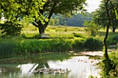 GLYNDEBOURNE, EAST SUSSEX: VIEW ACROSS LAKE TO MEADOW AND WOODEN SEAT / BENCH - WATER, POOL, TRANQUIL, PEACEFUL, COUNTRY GARDEN, LANDSCAPE