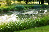 GLYNDEBOURNE, EAST SUSSEX: VIEW ACROSS LAKE TO MEADOW - WATER, POOL, TRANQUIL, PEACEFUL, COUNTRY GARDEN, LANDSCAPE