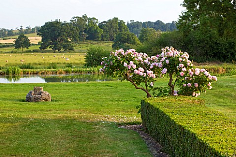 BROUGHTON_CASTLE_OXFORDSHIRE_VIEW_OUT_ACROSS_THE_LAKE_TO_COUNTRYSIDE_BEYOND_WITH_ROSE_BUSH_AND_HEDGE