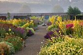 HELMSLEY WALLED GARDEN  YORKSHIRE: THE HERBACEOUS BORDER IN JULY DOMINATED BY VERBASCUMS AND MONARDAS