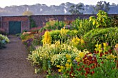 HELMSLEY WALLED GARDEN  YORKSHIRE: THE HERBACEOUS BORDER IN JULY DOMINATED BY VERBASCUMS  HELENIUMS AND ANTHEMIS