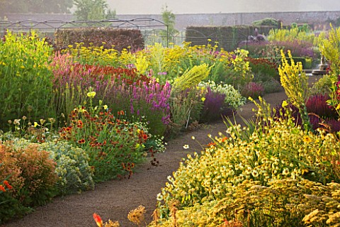 HELMSLEY_WALLED_GARDEN__YORKSHIRE_THE_HERBACEOUS_BORDER_IN_JULY_DOMINATED_BY_VERBASCUMS__GALLARDIAS_