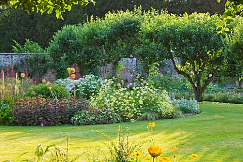 SLEDMERE_HOUSE_GARDEN_YORKSHIRE_BORDER_BESIDE_LAWN_IN_THE_WALLED_GARDEN__COUNTRY_GARDEN_CLASSIC_PERE