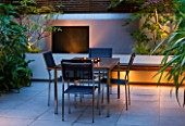 FULHAM GARDEN DESIGNED BY AMIR SCHLEZINGER - MY LANDSCAPES: MINIMALIST GARDEN LIT UP AT NIGHT -  EDGEWORTHIA CHRYSANTHA  ACER ACONITIFOLIUM  TABLE AND CHAIRS  PATIO