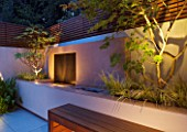 FULHAM GARDEN DESIGNED BY AMIR SCHLEZINGER - MY LANDSCAPES: MINIMALIST GARDEN LIT UP AT NIGHT -  EDGEWORTHIA CHRYSANTHA  ACER ACONITIFOLIUM  RAISED BED  WATER FEATURE