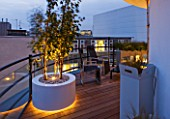 ZIGGURAT ROOF GARDEN BY AMIR SCHLEZINGER  MY LANDSCAPES: LIGHTING -CONTAINERS LIT UP AT NIGHT PLANTED WITH BETULA ALBOSINENSIS FASCINATION AND LIBERTIA IXIOIDES GOLDFINGER