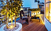 ZIGGURAT ROOF GARDEN BY AMIR SCHLEZINGER  MY LANDSCAPES: LIGHTING - CONTAINERS LIT UP AT NIGHT PLANTED WITH BETULA ALBOSINENSIS FASCINATION . TABLE AND DECK CHAIRS