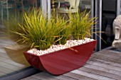 ROOF GARDEN IN SHOREDITCH  LONDON  DESIGNED BY AMIR SCHLEZINGER OF MY LANDSCAPES: RED CONTAINER ON DECKED ROOF WITH LIBERTIA GOLDFINGER