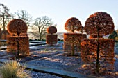 BROUGHTON GRANGE, OXFORDSHIRE: DESIGNER TOM STUART - SMITH: CLIPPED TOPIARY BEECH HEDGES IN FROST IN THE WALLED GARDEN. WINTER, COUNTRY GARDEN, TRIMMED, HEDGING, EVERGREEN, SHRUBS