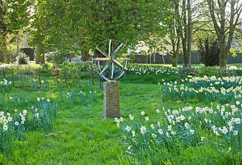 COUGHTON_COURT__WARWICKSHIRE__DR_TOMS_SECRET_DAFFODIL_GARDEN_RARE_THROCKMORTON_DAFFODIL_COLLECTION__