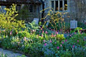 GRAVETYE MANOR  SUSSEX: EARLY MORNING SPRING LIGHT ON BORDER WITHG TULIPS AND FORGET-ME-NOTS
