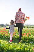 FARRINGTONS FARM  SOMERSET: MOTHER AND DAUGHTER PICKING BUNCHES OF TULIPA ORANGE EMPEROR