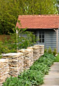 ARALIA GARDEN DESIGN - PATRICIA FOX: WEDNESDAY HOUSE: STONE WALLS WITH STACHYS AND POOL HOUSE