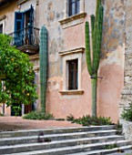 SICILY  ITALY: LA CASE BIVIERE NEAR LENTINI - THE MAIN FAÇADE AND TERRACE OF IL BIVIERE WITH GRAPEFRUIT CITRUS PARADISI MARSHES SEEDLESS  CACTUS CEPHALOCEREUS POLYLOPHUS