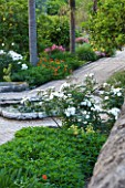 SICILY  ITALY: SAN GIULIANO ESTATE: THE ARABIC GARDEN IS UNDERPLANTED WITH FLOWERS WHICH LINE THE INTRICATE TILED PATHWAYS; WHITE ROSA PROSPERITY, PINK ROSA DEBORAH AND NASTURTIUMS
