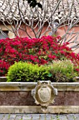 SICILY  ITALY: SAN GIULIANO ESTATE: THE FOUNTAIN TERRACE: THE FOUNTAIN DECORATED WITH THE FAMILY COAT OF ARMS AND BOUGAINVILLEA