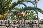 SICILY  ITALY: SAN GIULIANO ESTATE: CANARY ISLAND DATE PALM - PHOENIX CANARIENSIS, BEHIND THE DRYSTONE GARDEN WALL, WITH WATCHFUL FAMILY DOG FIUME - AN ITALIAN BREED CIRNECO DELL'ETNA
