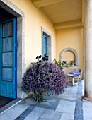 SICILY  ITALY: CASA CUSENI IN TAORMINA - MARBLE TERRACE WITH CONTAINER BY DOOR PLANTED WITH