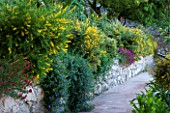 SICILY  ITALY: CASA CUSENI IN TAORMINA - RAISED BED BESIDE TERRACOTTA TILED PATH - STONE TERRACE  TERRACING  FLOWERS  MEDITERANNEAN