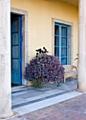 SICILY  ITALY: CASA CUSENI IN TAORMINA - TERRACOTTA AND MARBLE TILED TERRACE / PATIO WITH BLUE DOORS AND CONTAINER PLANTED WITH SUCCULENTS - MEDITERRANEAN