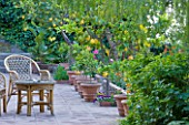SICILY  ITALY: CASA CUSENI IN TAORMINA - TERRACOTTA TERRACE / PATIO WITH WRATTEN CHAIRS AND TERRACOTTA CONTAINERS WITH YOUNG CITRUS TREES - A PLACE TO SIT  MEDITERRANEAN