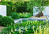 CHELSEA FLOWER SHOW 2014: LAURENT PERRIER GARDEN BY LUCIANO GIUBBILEI - METAL WATER RILL WITH POOL AND PLANTING OF LUPINS AND ORLAYA GRANDIFLORA
